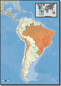 419px-South_America_location_BRA[1]